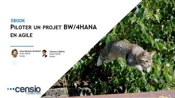Réussir son projet BW/4HANA